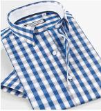 싼 파란 백색은 남자를 셔츠를 검사한다