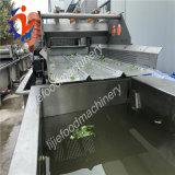Chou examinant le découpage coupant déchiquetant la machine à laver de nettoyage