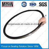 Grandi/grandi anelli di chiusura di gomma modellati abitudine