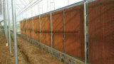 Rilievo di raffreddamento per evaporazione per la serra e l'azienda avicola