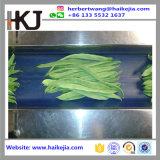 Máquina de embalagem vegetal