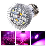 Il LED coltiva l'indicatore luminoso chiaro della pianta d'appartamento E27 per le piante