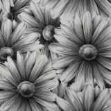 2016最新の美しい花は壁紙を設計する