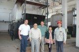 De compacte Leverancier van de Stoomketel 4000kg van Dzl 2000kg van de Structuur Met kolen gestookte
