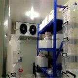 Grande congelatore, conservazione frigorifera per alimento Frozen