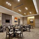 세륨 RoHS의 증명서를 가진 안정되어 있는 성과 및 좋은 품질 LED 점화