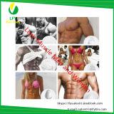Gli steroidi iniettabili U stampato in neretto 300mg/Vail Equipose hanno basato la costruzione liquida del muscolo