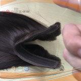 브라질 Virgin 머리 물고기 선 달무리 연장 (PPG-l-0972)