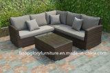 Viro PE 등나무 정원 탁자 의자 고정되는 옥외