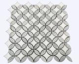 Китай поставщиком серого и белого каррарского мрамора серый подсолнечника мозаики плитки