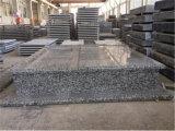 Bloque de piedra automática Máquina de corte de puente para la lápida de granito/Monumento