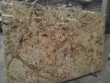 Crema de oro del granito baldosas pulidas losas&+encimera