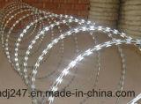 Filo del rasoio di obbligazione di Hight del collegare del rasoio galvanizzato collegare del rasoio di alta qualità a Guangzhou