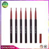 Il professionista di offerta speciale compone il rossetto cosmetico duraturo della penna molto colorata delle estetiche