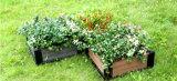 Bac de fleur en bois de cadre de fleur de Decking de WPC