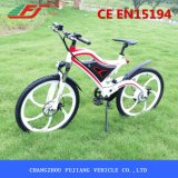 Bicicleta elétrica da montanha de alta velocidade da praia da neve com pára-choques