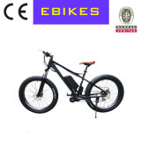 MEDIADOS DE bici de montaña del motor de 48V 750W Bafang para la nieve de la playa
