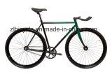 도시 자전거 타는 사람 최신 판매 단 하나 Fixie 기어 자전거