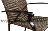 /Rattan esterno/presidenza & Tabella del rattan mobilia del giardino/patio/hotel ha impostato (HS1035C&HS6001DT)