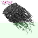 Clip umana brasiliana riccia malese di prezzi di fabbrica di Yvonne nelle estensioni 7PCS/Set dei capelli
