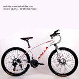 Bicicleta adulta barata de la montaña de la alta calidad