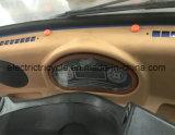 600~1200ВТ 60V - полностью закрыть электрические системы вентиляции салона инвалидных колясках 3 колеса автомобиля