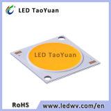 높은 루멘 순수한 백색 고성능 50W 옥수수 속 칩 LED 배열