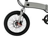電気自転車のバイクEbikeを折る中国の工場卸売の小型フレーム
