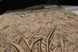 Tessuto beige della tenda del Chenille (FTH31052)
