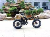 ثلج كهربائيّة درّاجة سمين كهربائيّة ([تدن05ف])