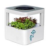 Intelligenter Mikro-Waldhaushalts-aromatischer Luft-Reinigungsapparat mit betätigtem Kohlenstoff, Anion und HEPA Mf-S-8600