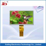 파란 역광선 LCD 스크린 LCD 디스플레이 모듈