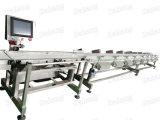 Plätzchen u. Schokoladen-Gewicht Decting Maschinen-Export-Feld-Cer SGS