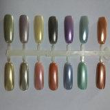 El polvo del pigmento del espejo para la base del polaco del color Shinny la manicura del polvo