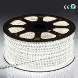휴일 LED 끈 빛 UV LED 지구 120 전압 LED 테이프 점화