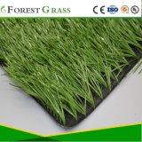 Le football en gazon artificiel, les sports de l'herbe