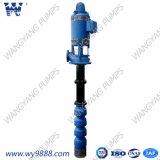 Insieme profondo della pompa centrifuga della pompa buona della turbina verticale lunga a più stadi dell'asta cilindrica