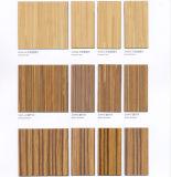 중국 공장 화재 방지 매트/마포 열저항을%s 가진 벽면을%s 짜임새 완료 HPL 박층으로 이루어지는 장