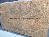 Оптовый желтый сляб гранита Бразилии для плитки строительного материала (доктор золотистый)