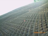 HDPE Geocell vom Fabrik-Hersteller