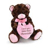 Regalos promocionales del oso para el chocolate de la tarjeta del día de San Valentín