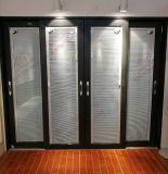 Porte coulissante grande en aluminium résidentielle (BHA-DS08)