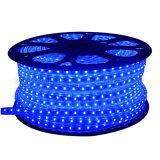 Indicatore luminoso di striscia diffuso SMD5050 impermeabile della striscia RGBW 220V LED del LED