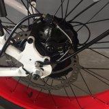 2017 جديدة تصميم [غود قوليتي] هولندا أسلوب [لي] بطارية درّاجة كهربائيّة مع إطار العجلة سمين