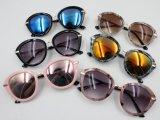 Óculos de sol Ks1329 da forma