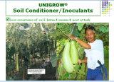 Condicionador do solo de Unigrow e bio fertilizante para alguma plantação vegetal