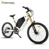 Gros vélo puissant de neige de pneu de 48V 1000W Ebike