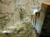 Arabescato Chiaの中国の大理石の平板のタイル