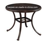 屋外の/Rattan/庭は/テラスのホテルの家具の鋳造アルミ椅子及び表セットした(HS 3299C& HS 6119DT)