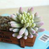 Искусственные цветы декоративные цветы с Flocking Succulents